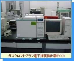 ガスクロマトグラフ電子捕獲検出器(ECD)