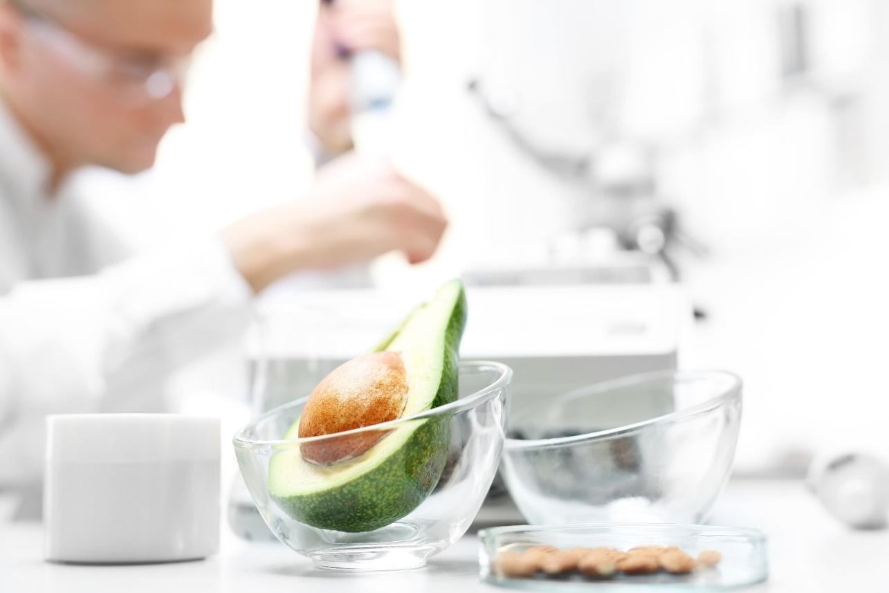 Avocado in glass bowl in scientific testing laboratory