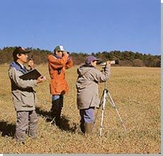 自然環境調査