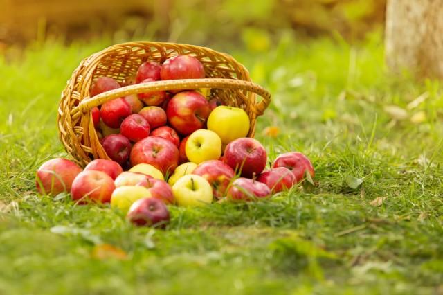 通過農藥殘留檢測的新鮮蘋果