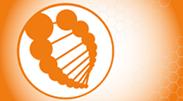 DNA & RNA Oligonucleotides