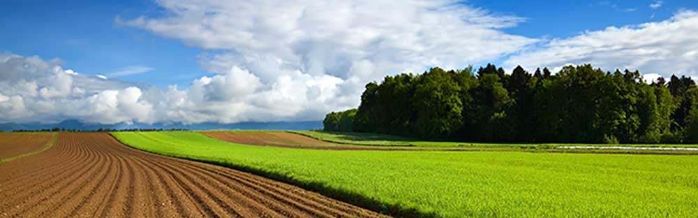 Eurofins Agroscience Services - Eurofins Scientific