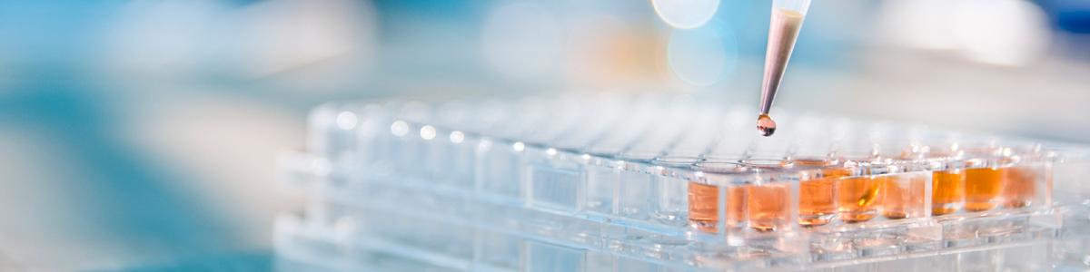 In-vitro studies - Eurofins Scientific