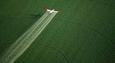 The Forefathers of Pesticide Testing