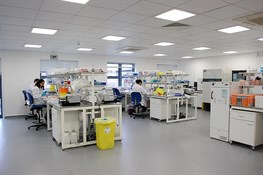 Oxford Lab 2