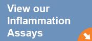 inflamationassay