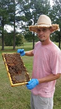honeybeesman