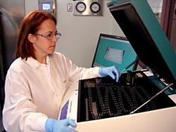 Rapd Bioburden Testing