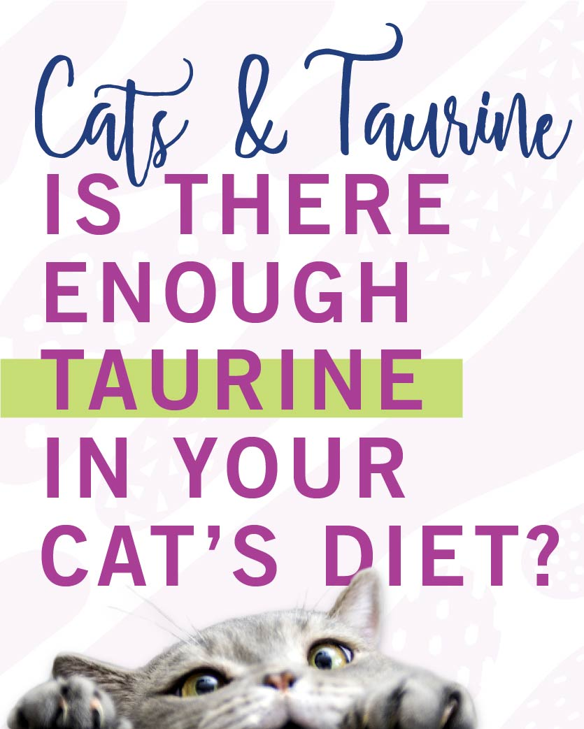 Taurine in Cat Food