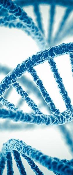 Genetic ID & Microbiomes