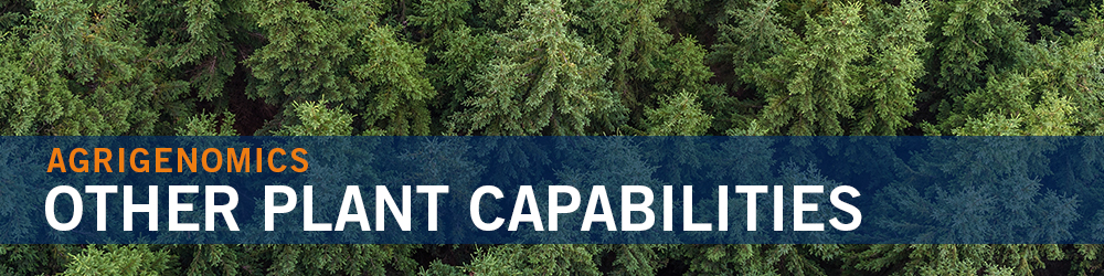 Other Plant Capabilities - pine trees
