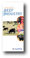 Beef Industry Trifold