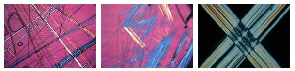 PLM - Polarized Light Microscopy