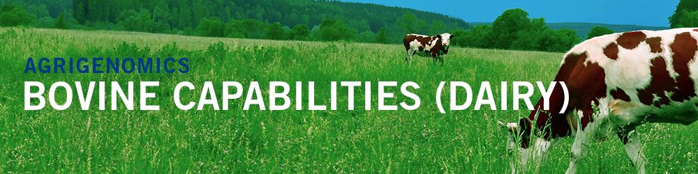 Bovine Capabilities (Dairy) - cows in green field