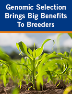 Genomic Selection Brings Big Benefits to Breeders