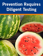 Prevention Requires Diligent Testing