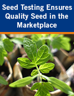Seed Testing Ensures Quality Seed in the Marketplace