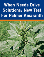 When Need Drives Solutions: New Test For Palmer Amaranth
