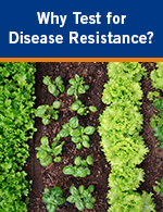 Why Test for Disease Resistance?