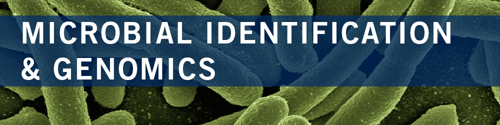 Microbial Identification & Genomics