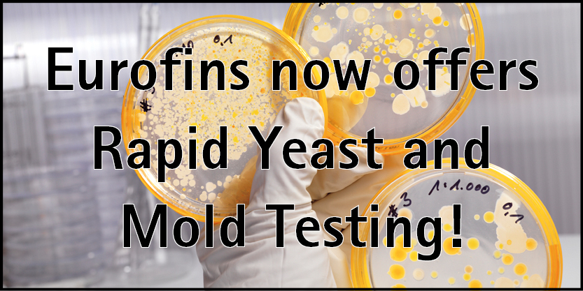 Microbiology Testing - Rapid Yeast & Mold