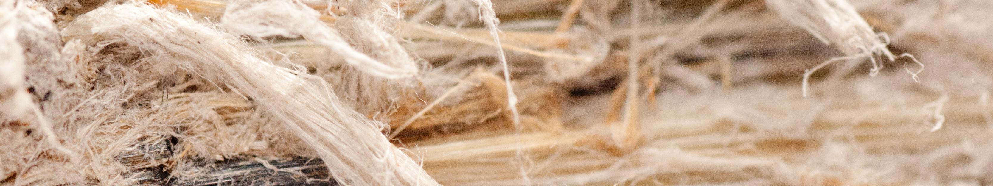 Asbestos Testing Eurofins Usa