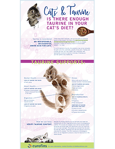 Cats and Taurine