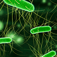 Pathogenic Impact