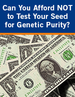 Can You Afford NOT to Test Your Seed for Genetic Purity?