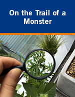 On the Trail of a Monster