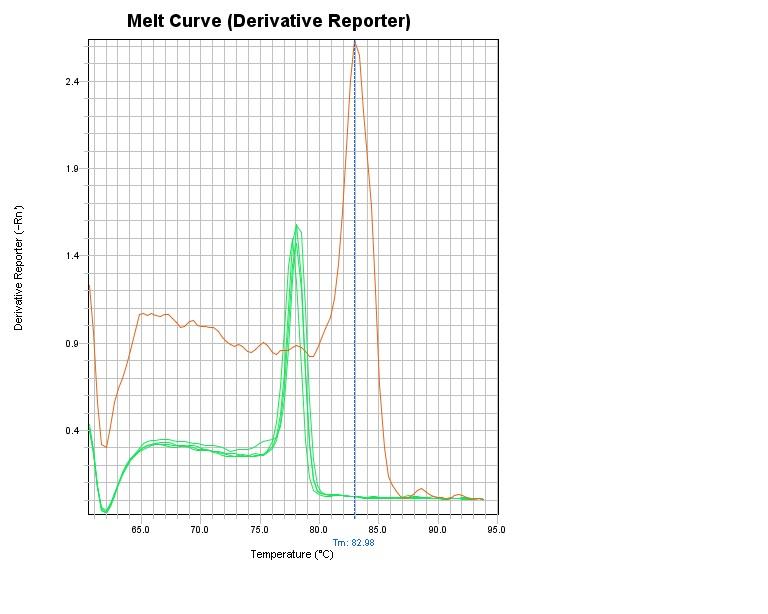 Melt Curve