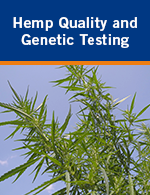 Hemp Quality and Genetic Testing