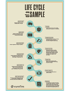 The life cycle of a sample, a poster created by Eurofins describing how a sample flows through our labs.