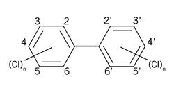 PCB Congener Structure