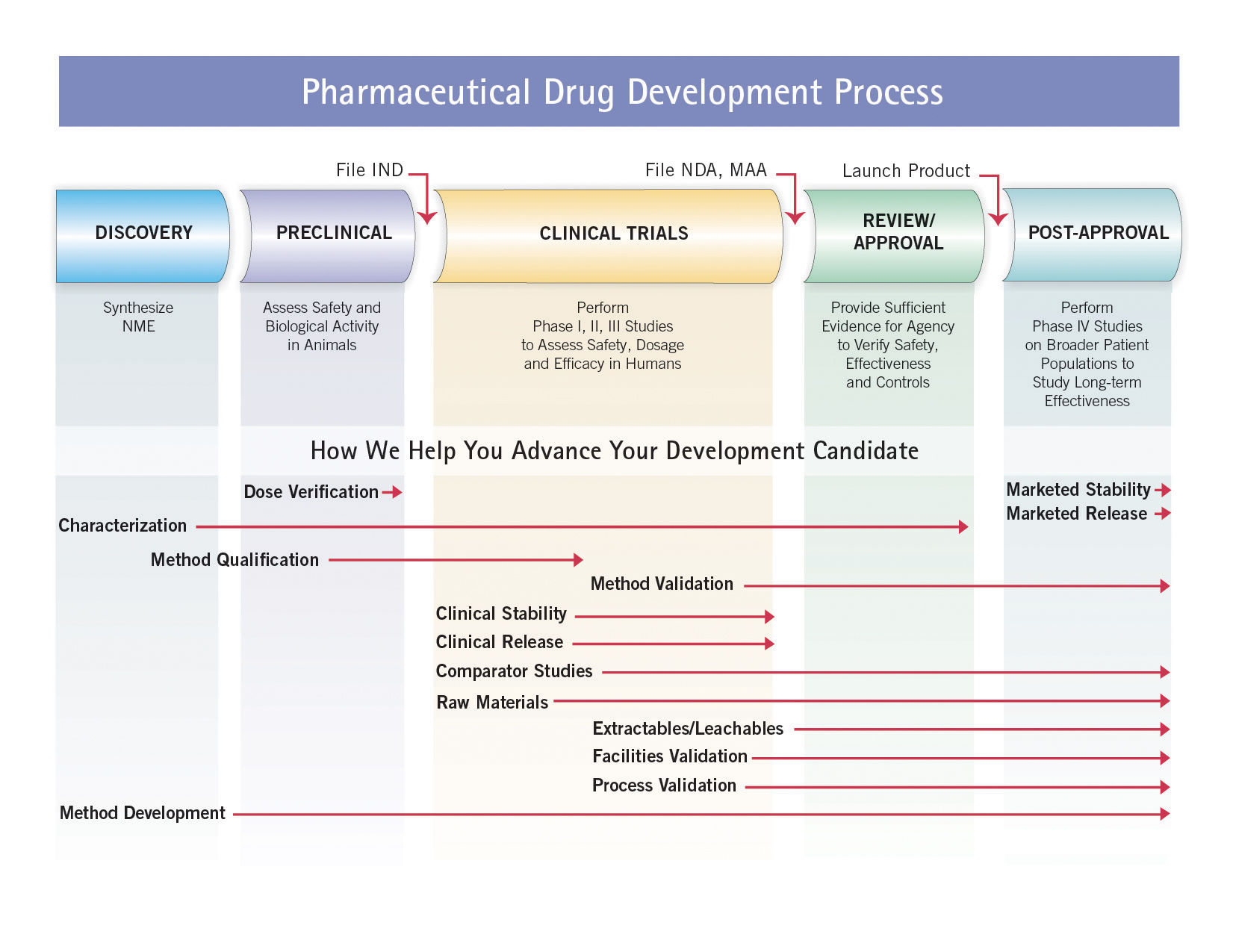 Pharmaceutical Drug Development Process
