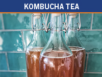 Kumbucha Tea: Case Study
