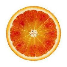 Mikrobiologiske analyser af frugt og grønt