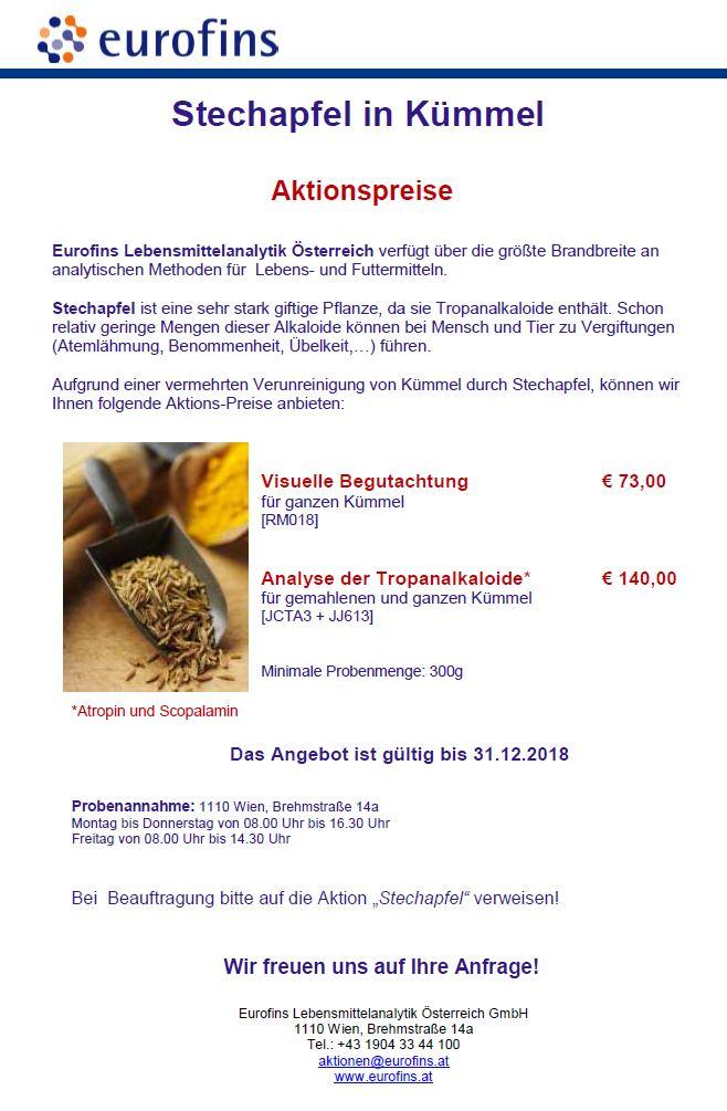 Stechapfel Flyer