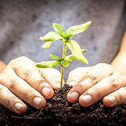 Nachhaltigkeitswoche bei Eurofins Food Testing