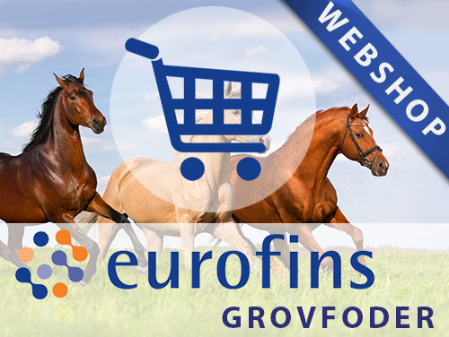 Webshop grovfoder