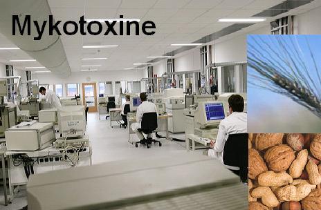 MyKotoxine