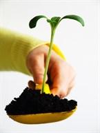 Bioaccessibilite