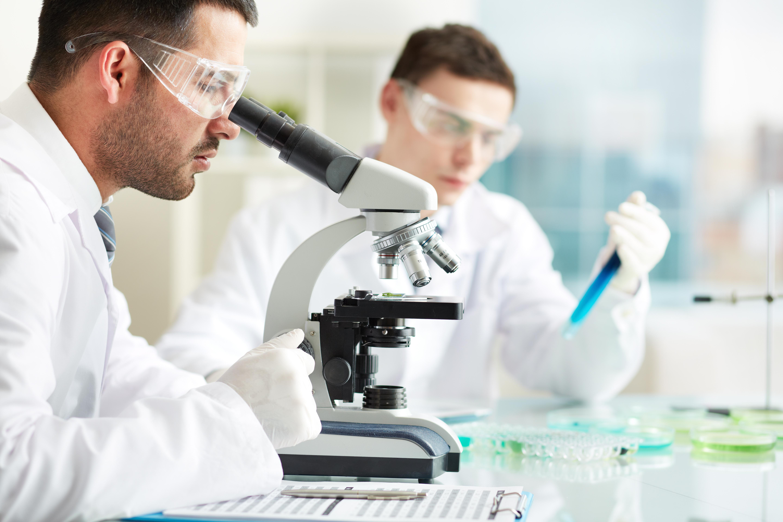 Pharmaceutical Bio Process