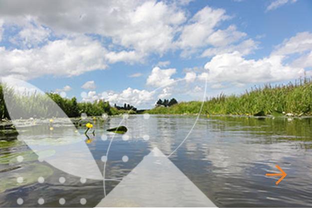 Ecologisch & hydrobiologisch onderzoek