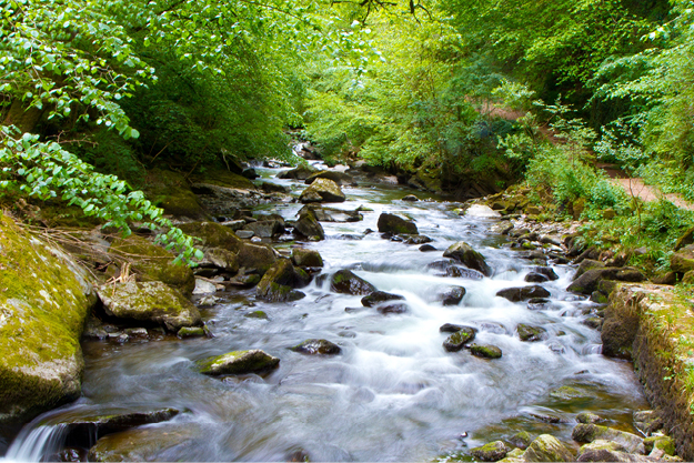 Surveillance environnementale des eaux naturelles