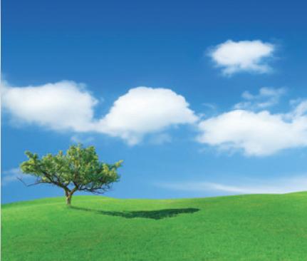 Tree-grass