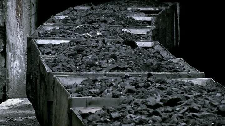 Combustibles minéraux et charbons de bois